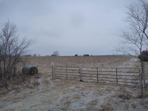 Reynoldson 35 : Palmyra : Otoe County : Nebraska