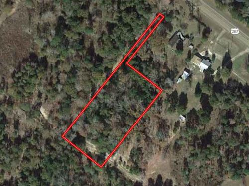 Rare And Secluded Plot : Woodville : Tyler County : Texas