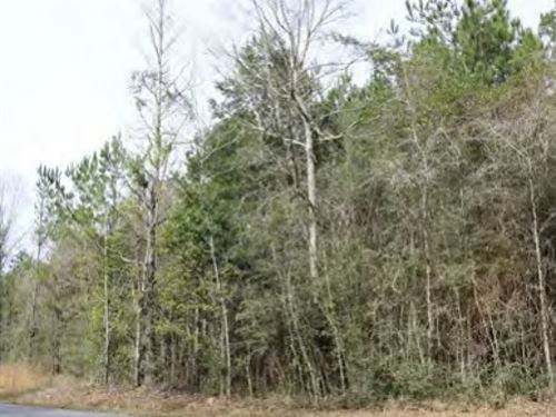 6 Acres In George County In Lucedal : Lucedale : George County : Mississippi