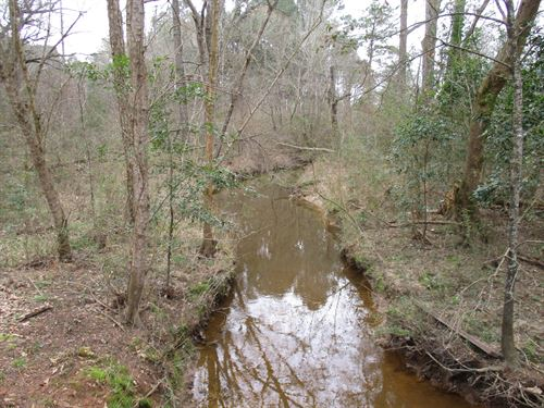 Timber Land, Recreational, Hunting : Rusk : Cherokee County : Texas