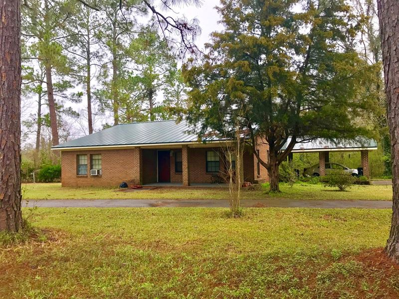 Country Home Land Samson, Alabama : Samson : Geneva County : Alabama