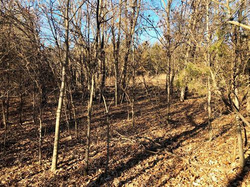 Southern Iowa Land For Sale : Unionville : Davis County : Iowa