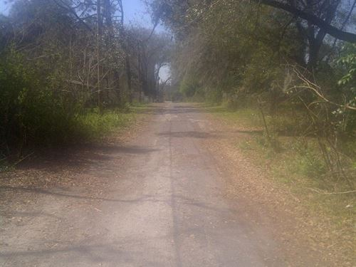 Great Lakeland Fla Lot : Lakeland : Polk County : Florida