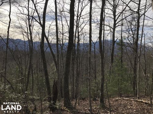 Pittman Center Mountain Property : Sevierville : Sevier County : Tennessee