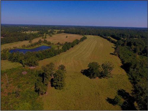 85 Acres In Neshoba County In Phila : Philadelphia : Neshoba County : Mississippi
