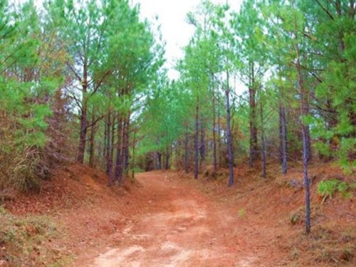123 Acres In Attala County In McCoo : McCool : Attala County : Mississippi
