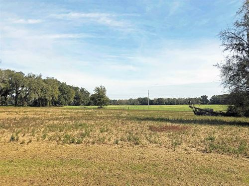 5 Acres Out Country Lake City : Lake City : Columbia County : Florida