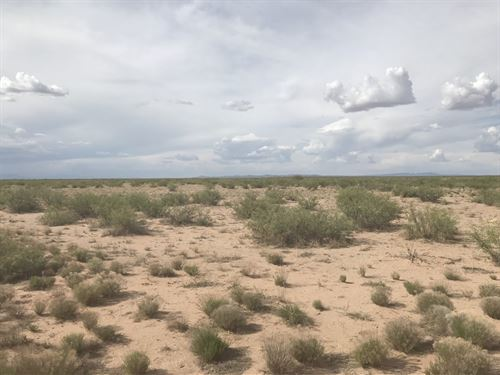 Southwest Land For Sale : Deming : Luna County : New Mexico