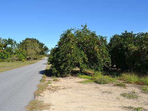 Frostproof Grove & Residential : Frostproof : Polk County : Florida