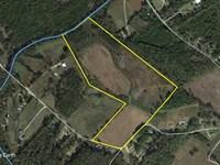 Lee Branch Farm : Saint George : Dorchester County : South Carolina