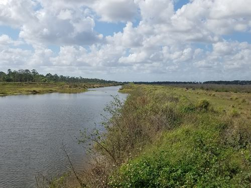 650 Irrigated Acres Multiple Uses : Punta Gorda : Polk County : Florida