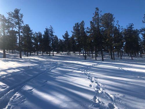 Big O Ranch, Lot : Westcliffe : Custer County : Colorado