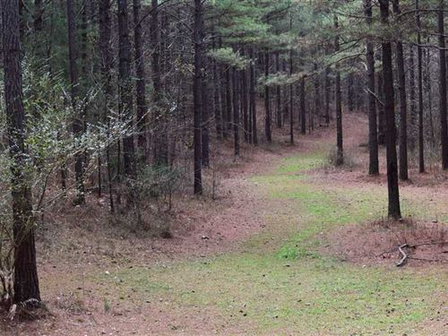 Snow Springs Tract 1Bc 153 ac : Adairsville : Bartow County : Georgia