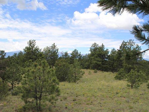 Colorado Mountain Land Views : Westcliffe : Custer County : Colorado