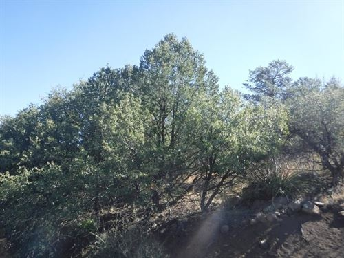 Land .81 Ac Silver City NM Single : Silver City : Grant County : New Mexico