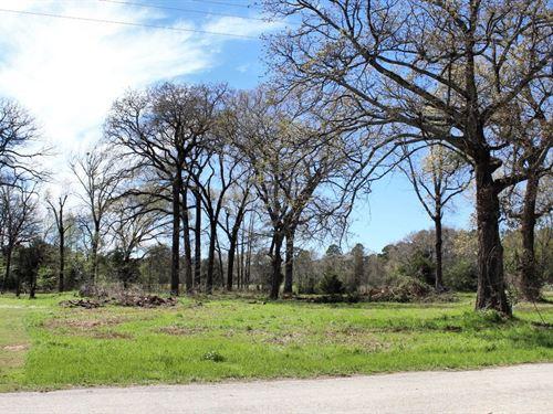 Vacant Lots, Lake Palestine : Frankston : Henderson County : Texas