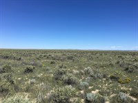 Central NM Acreage Torrance County : McIntosh : Torrance County : New Mexico