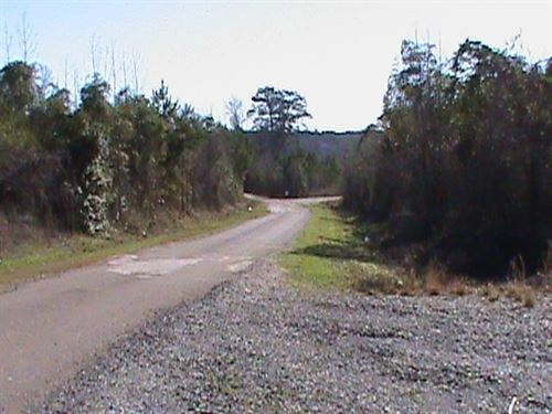 Land For Sale, Rusk County, TX : Henderson : Rusk County : Texas