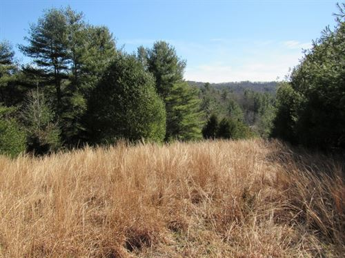 Land For Sale in Floyd County, VA : Floyd : Virginia