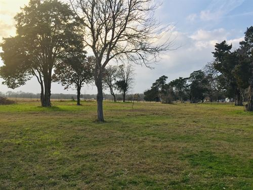 Nice 9 Acre Tract With Pond : Rockdale : Milam County : Texas