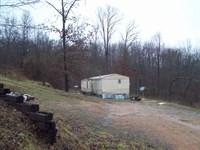Mobile Home 3.1 Acres Near Piedmont : Piedmont : Wayne County : Missouri