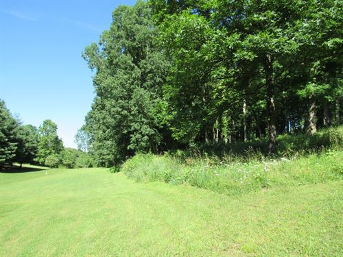 Wooded Building Lot Long Range : Abingdon : Washington County : Virginia