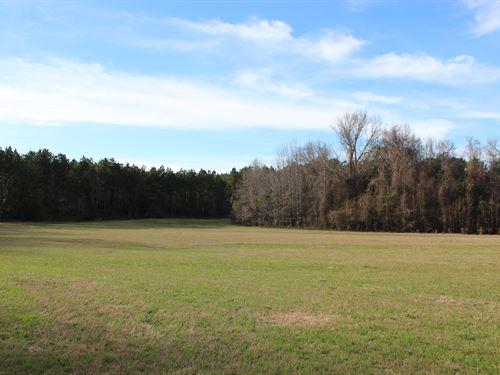 Versatile Property, Super Location : Tuskegee : Macon County : Alabama
