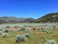 Excellent 40 Ac, Power On The Lot : Termo : Lassen County : California
