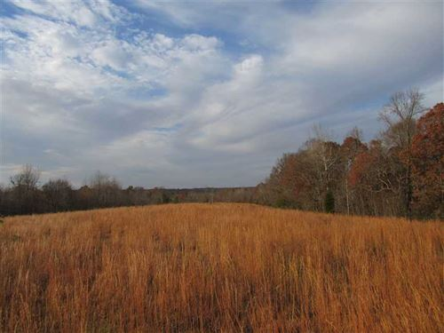 134 Acres Near Carroll County 1000 : Huntingdon : Carroll County : Tennessee