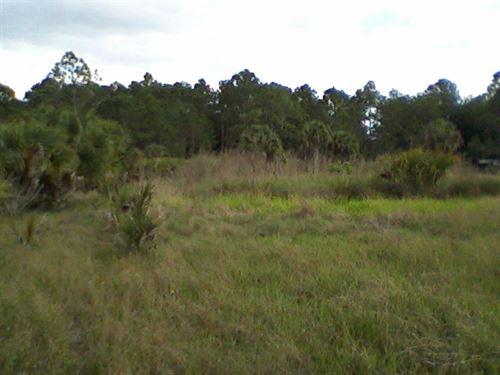 Okeechobee County, Fl $120,000 : Okeechobee : Florida