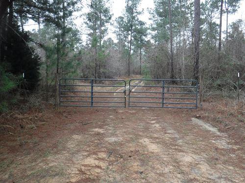 Great 39 Ac +/- Homesite In Brandon : Brandon : Rankin County : Mississippi