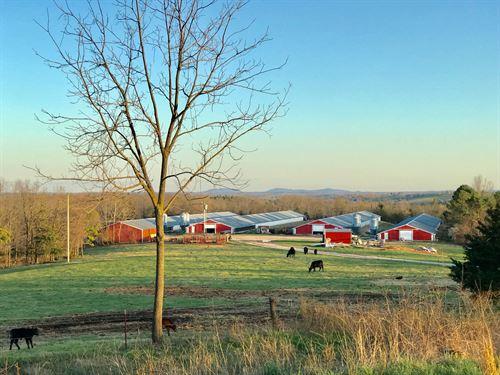Tyson Contract 4 House Broiler Farm : Omaha : Boone County : Arkansas