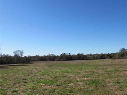 Rolling Pasture On Kirklin Creek : Tylertown : Walthall County : Mississippi