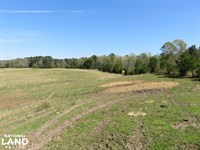 Homesite With Pasture : Star : Rankin County : Mississippi