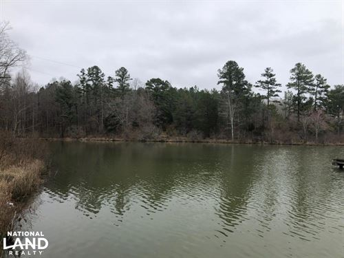 Dumas Lake Tract : Ripley : Tippah County : Mississippi