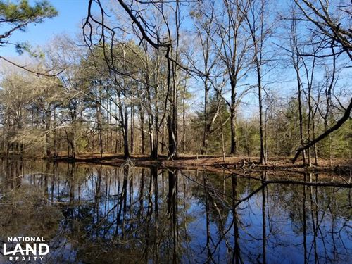 Highway 331 Hunting,Timber And Home : Montgomery : Alabama