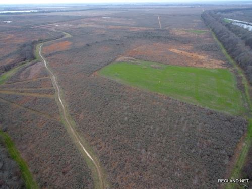 481 Ac, Duck & Deer Hunting Wr : Eudora : Chicot County : Arkansas