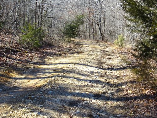 Land For Sale in Fulton County : Mammoth Spring : Fulton County : Arkansas