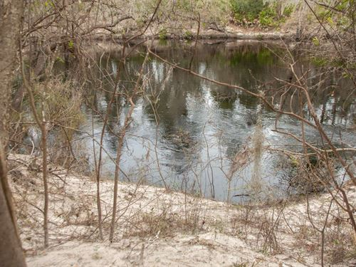 Upper Suwannee River Lot All : Live Oak : Suwannee County : Florida