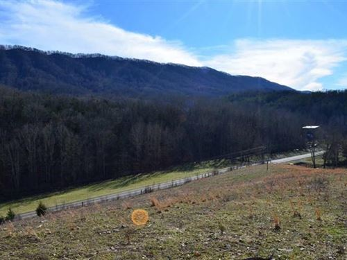 47 Acres Mostly Pasture Some : Thorn Hill : Grainger County : Tennessee