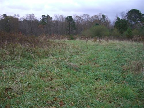 80 Acres Section : Section : Jackson County : Alabama