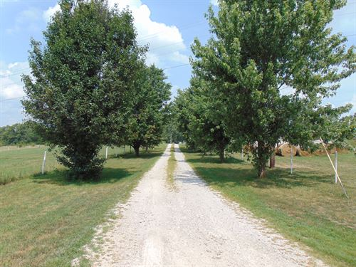 Farm For Sale In The Ozarks Of Mo : Macomb : Wright County : Missouri