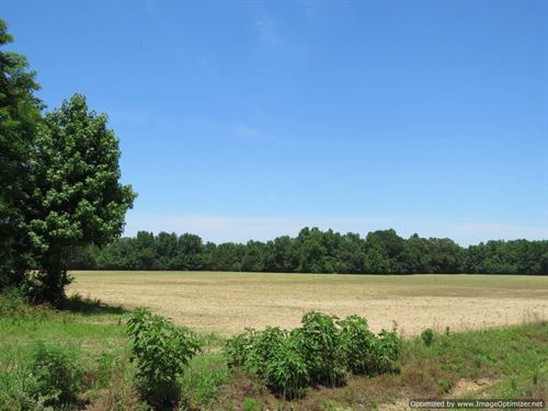 Beautiful Recreational Tract : Oxford : Lafayette County : Mississippi