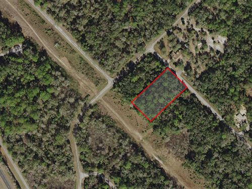 Nice Lot In Secluded Neighborhood : Crystal River : Citrus County : Florida