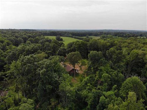 44.657 Acres-Balk Rd : Sturgis : Saint Joseph County : Michigan
