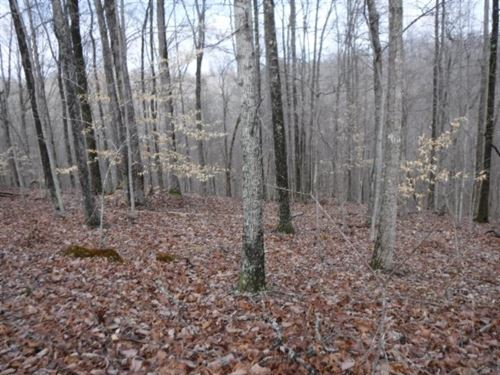 5+ Ac W/Mtn Views In Secluded Area : Hilham : Clay County : Tennessee