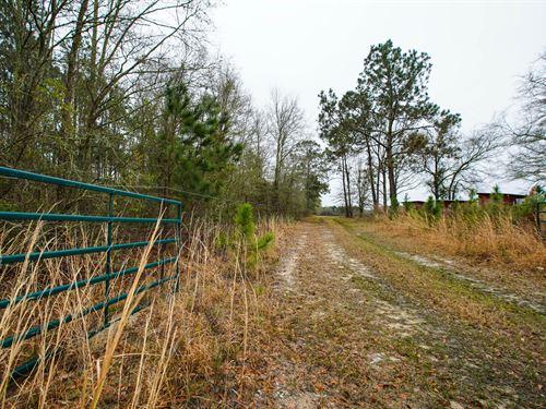 Brantley Farm : Hazelhurst : Jeff Davis County : Georgia