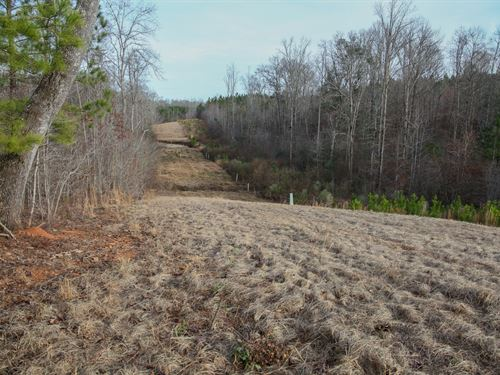 Hunting, Timber, And Homestead Land : Sylacauga : Talladega County : Alabama