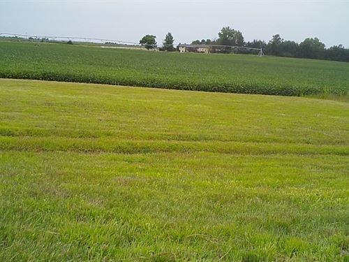 Long Pine Irrigated Farm And Wildli : Long Pine : Brown County : Nebraska