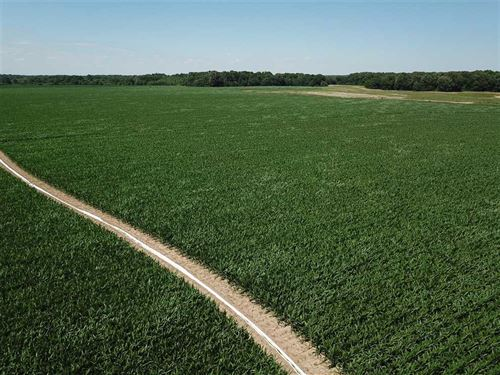 Price Reduced, 90 Acre Income Prod : Ethel : Arkansas County : Arkansas